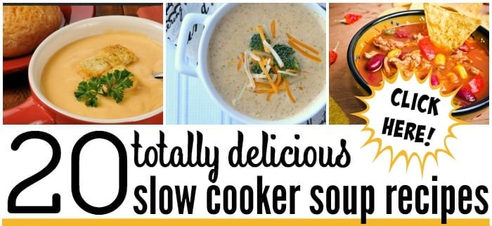 click here for totally delicious slow cooker soup recipes
