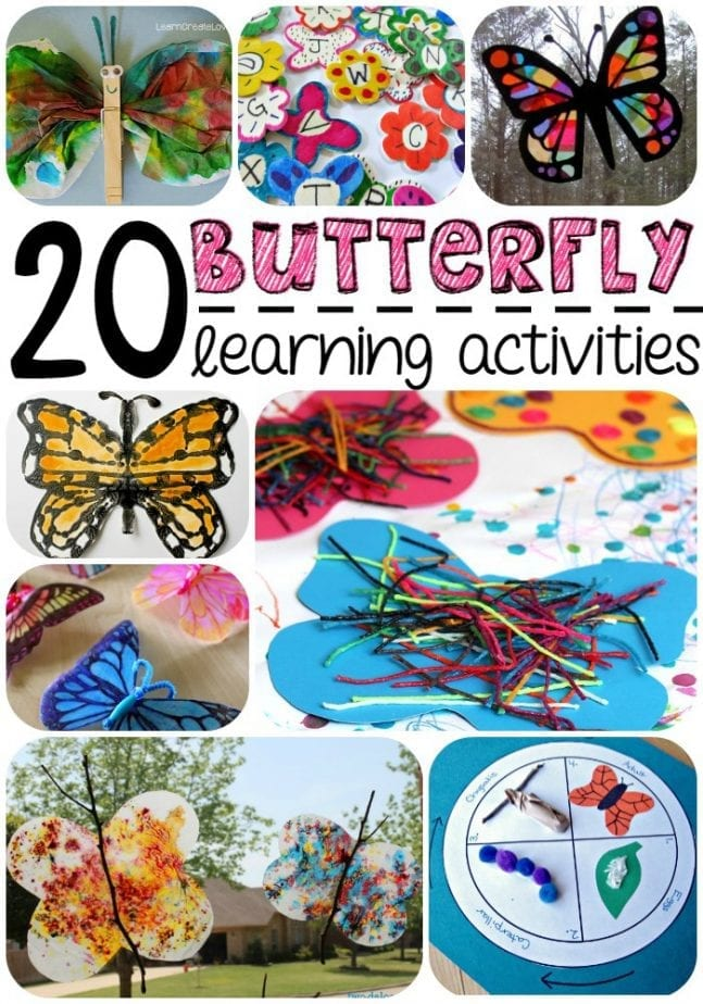 20-butterfly-learning-activities-for-kids