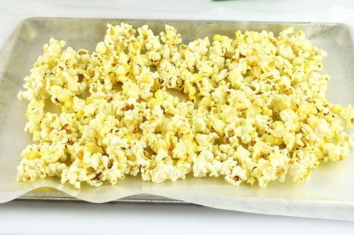 Shark Bait Popcorn Inprocess1