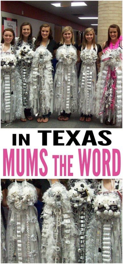 In Texas, Mums The Word. And like everything else, we like our mums to be as BIG as possible. Click now!