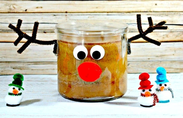 Rudolph Candle as a present